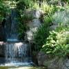 El encanto de los jardines japoneses