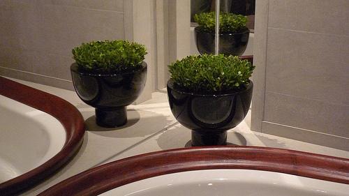 Baño De Tina Con Hierbas:Decoración de baños: apostando a las plantas