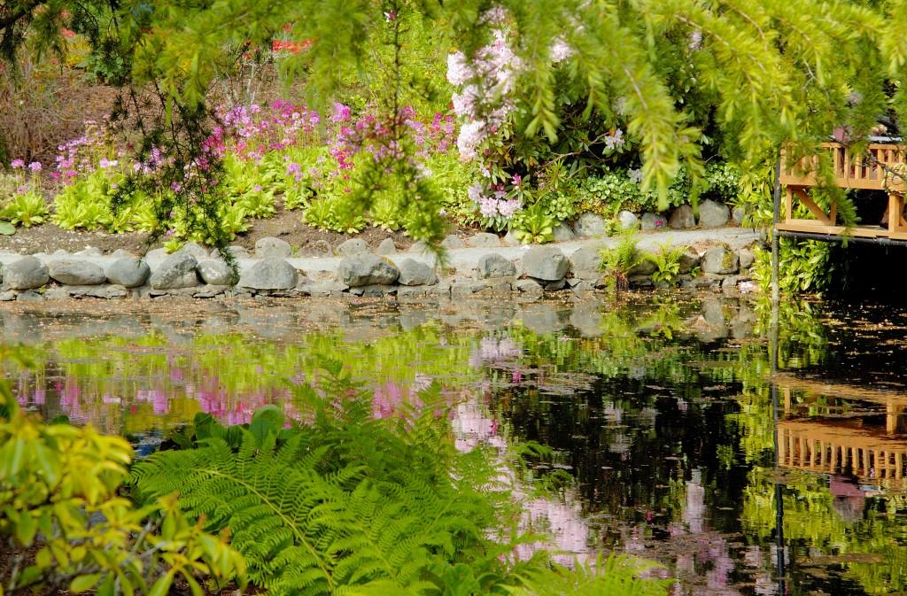 Dise a tu jard n feng shui decoraci n e interiorismo - Disena tu jardin ...